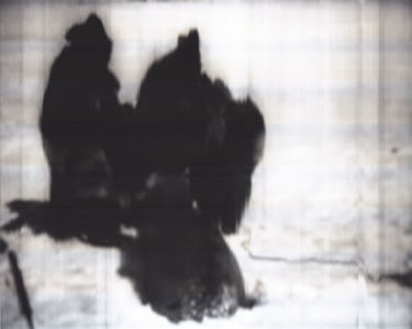 SCANTRIFIED MOVIE NANOOK OF THE NORTH #272, 2014, Digital C-print, Dimensions Variable