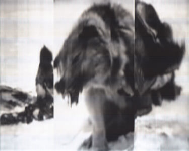 SCANTRIFIED MOVIE NANOOK OF THE NORTH #282, 2014, Digital C-print, Dimensions Variable
