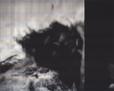 SCANTRIFIED MOVIE NANOOK OF THE NORTH #340, 2014, Digital C-print, Dimensions Variable